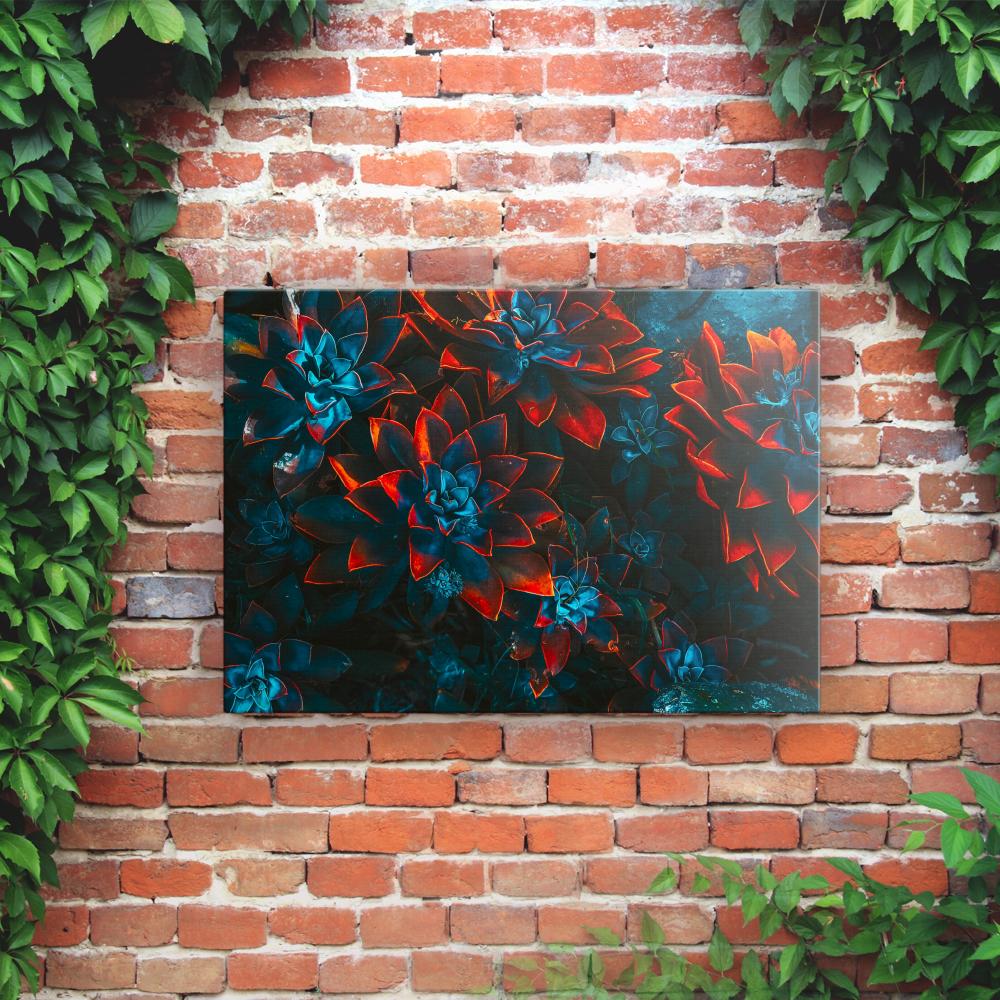 Outdoor Printed Garden Art Wall Panel - Succulents