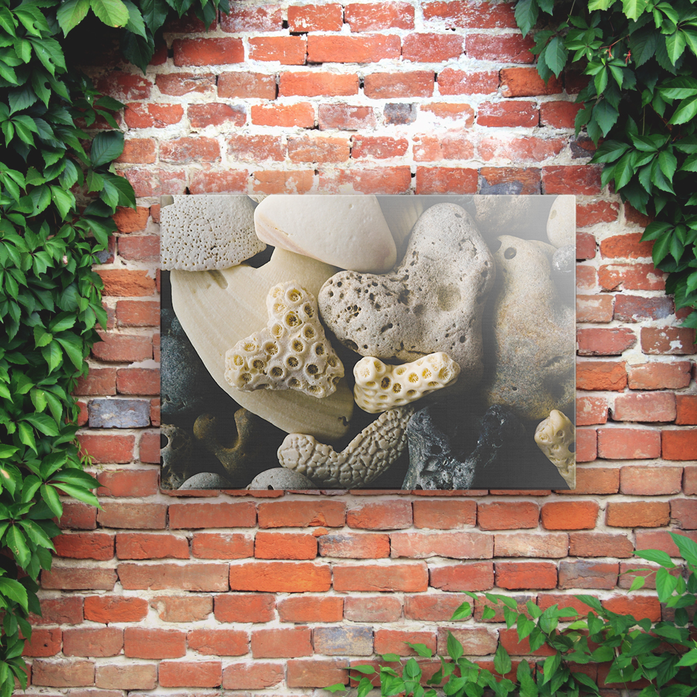 Printed Outdoor Garden Wall Art Panels - Coral & Shells