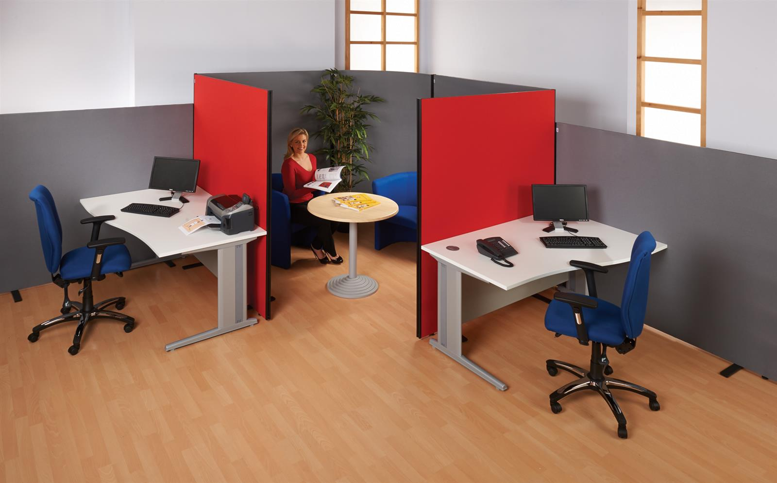 Busy Screen Classic Floor Partition System