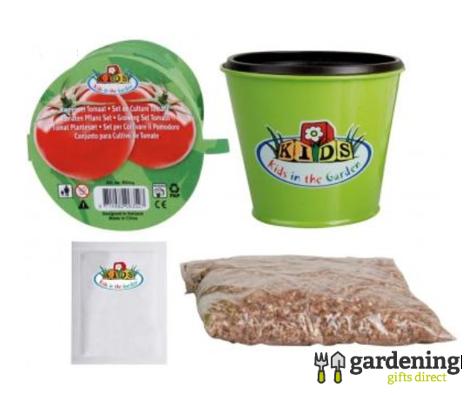 Children's Tomato Grow Kit