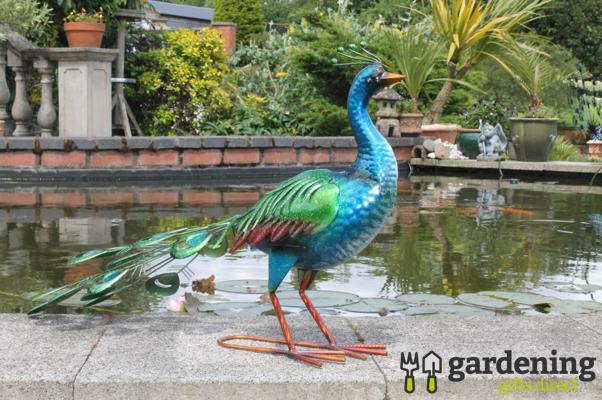 Vibrant Metal Peacock Garden Ornament