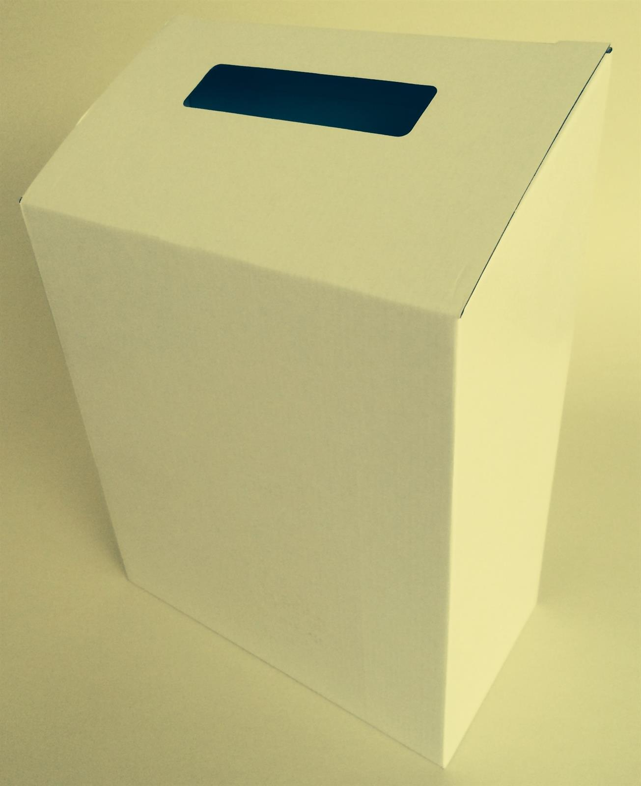 Cardboard Ballot Suggestion Box